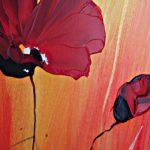 hoa poppy m2341-1