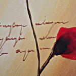 hoa poppy m2342-1