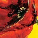 hoa poppy m2344-2