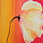 hoa poppy m2345-1