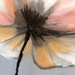 hoa poppy m2355-1