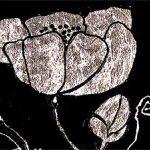 hoa poppy m2356-1