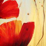 hoa poppy m2358-2