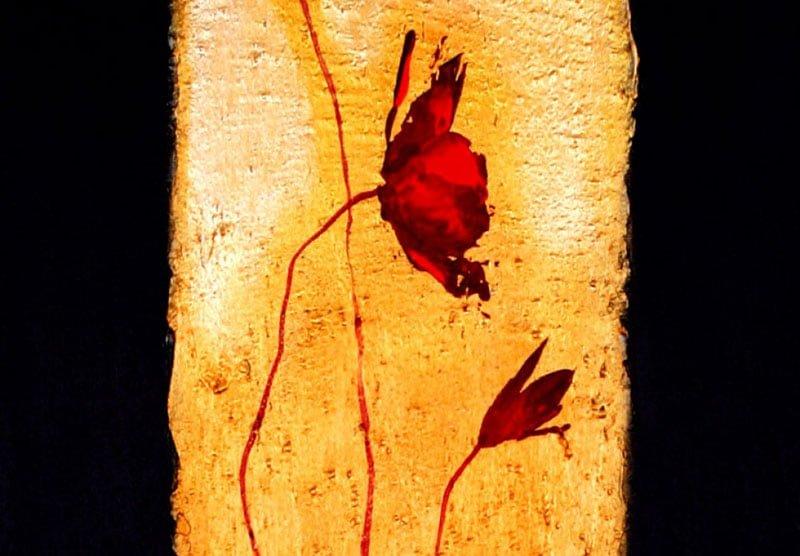 hoa poppy m2360-1