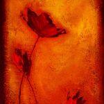 hoa poppy m2360-2