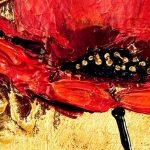 hoa poppy m2362-2