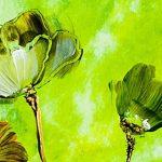 hoa poppy m2366-1