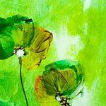 hoa poppy m2366-2