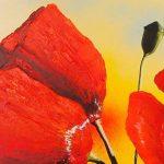 hoa poppy m2367-2