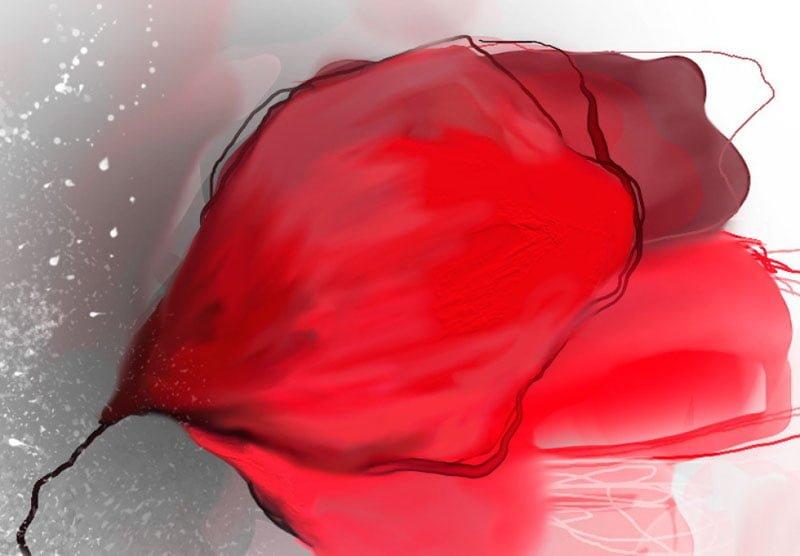 hoa poppy m2369-2
