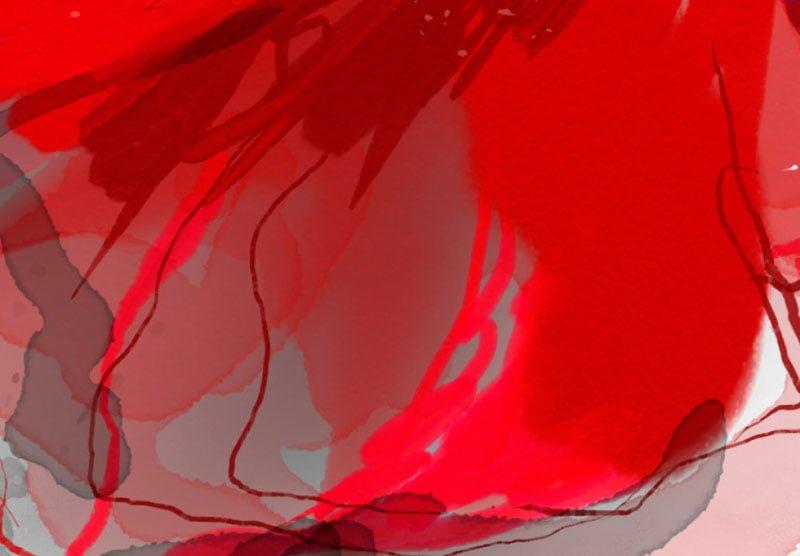hoa poppy m2369-3