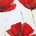 hoa poppy m2371-1