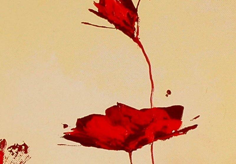 hoa poppy m2372-2