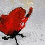 hoa poppy m2374-2