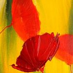 hoa poppy m2375-1