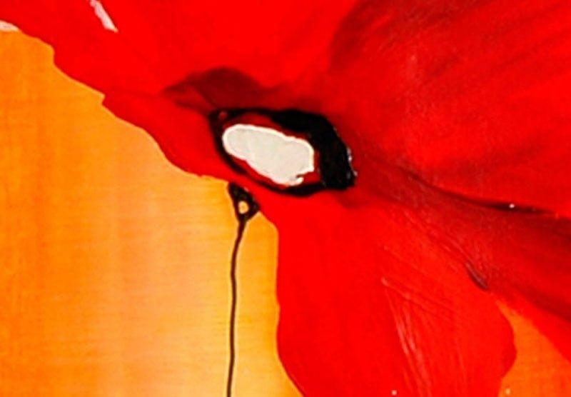 hoa poppy m2379-2