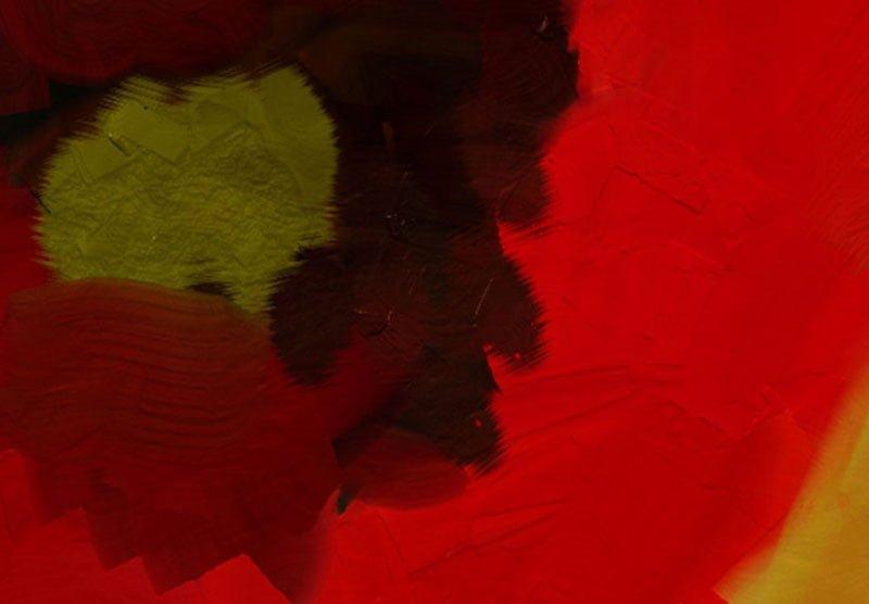hoa poppy m2384-2