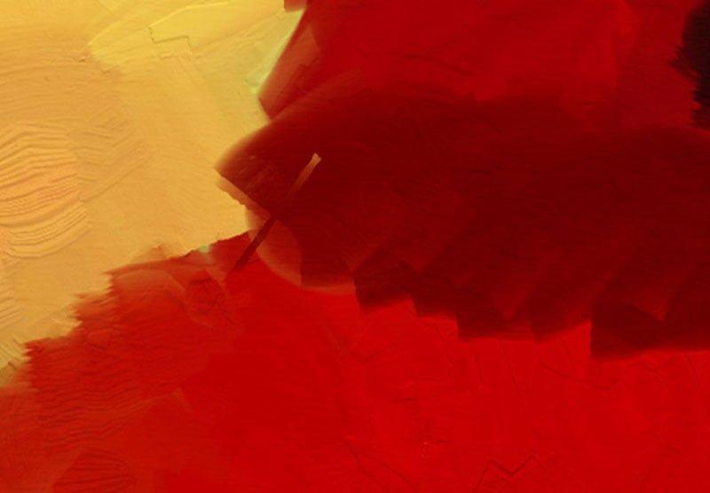 hoa poppy m2384-3