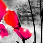 hoa poppy m2389-3