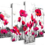 hoa poppy m2389-4